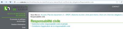 resp_civile